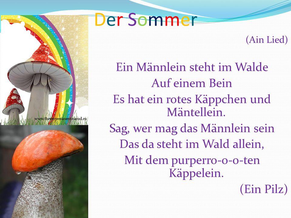 Der SommerDer Sommer (Ain Lied) Ein Männlein steht im Walde Auf einem Bein Es hat ein rotes Käppchen und Mäntellein. Sag, wer mag das Männlein sein Da