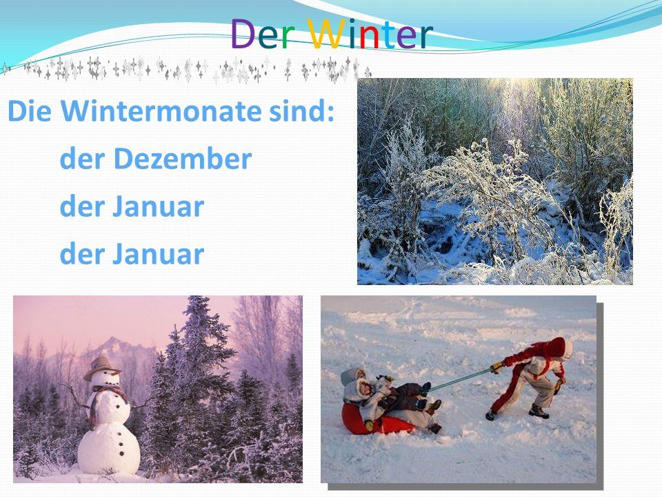 Der WinterDer Winter Die Wintermonate sind: der Dezember der Januar