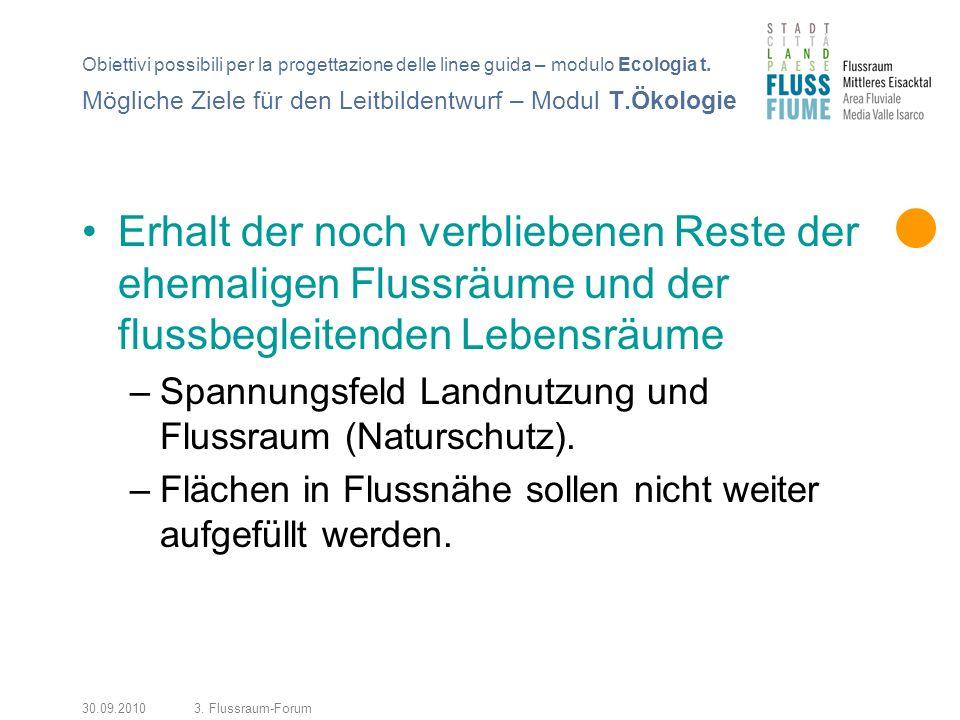 30.09.20103. Flussraum-Forum Mögliche Ziele für den Leitbildentwurf – Modul T.Ökologie Erhalt der noch verbliebenen Reste der ehemaligen Flussräume un