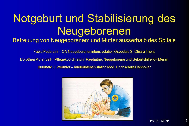 PALS - MUP 1 Notgeburt und Stabilisierung des Neugeborenen Betreuung von Neugeborenem und Mutter ausserhalb des Spitals Fabio Pederzini – OA Neugeborenenintensivstation Ospedale S.