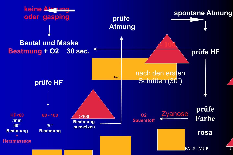 PALS - MUP 1 keine Atmung oder gasping Testo Beutel und Maske Beatmung + O2 30 sec.