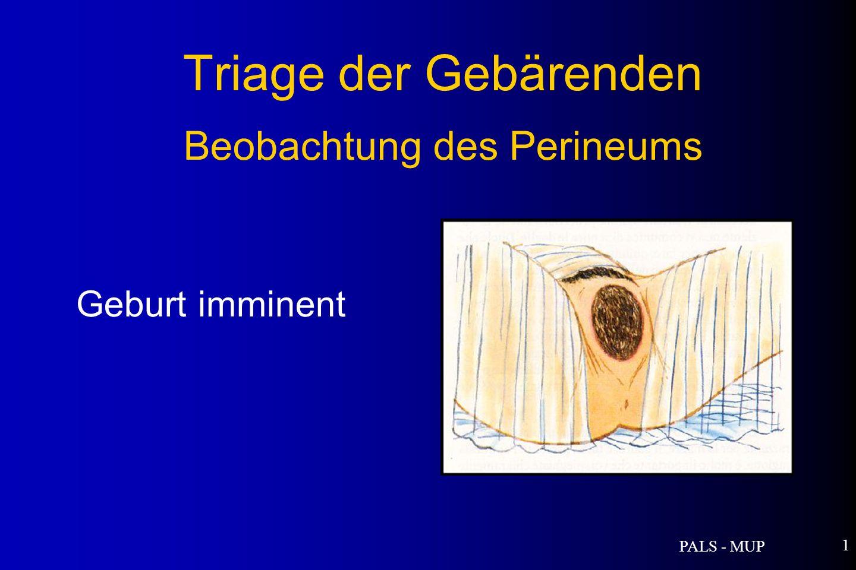 PALS - MUP 1 Triage der Gebärenden Beobachtung des Perineums Geburt imminent