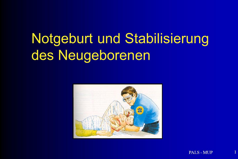 PALS - MUP 12 Wichtige Punkte für eine spontane Geburt Die Mutter auffordern zu pressen Das Neugeborene auf die Höhe der Mutter legen