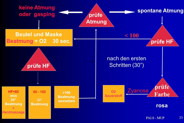 PALS - MUP 23 keine Atmung oder gasping Testo Beutel und Maske Beatmung + O2 30 sec.