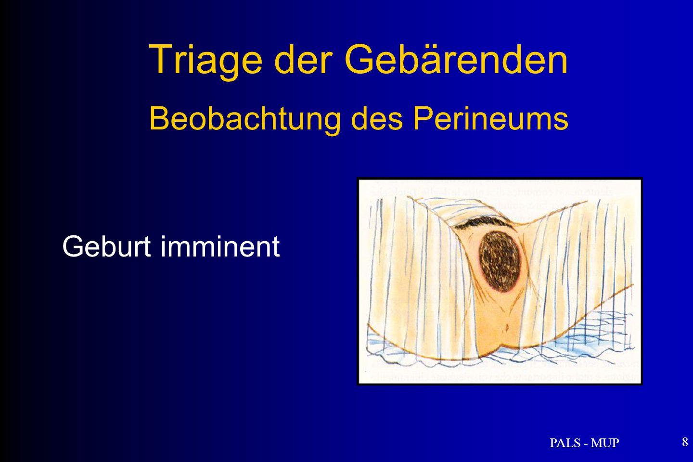 PALS - MUP 8 Triage der Gebärenden Beobachtung des Perineums Geburt imminent