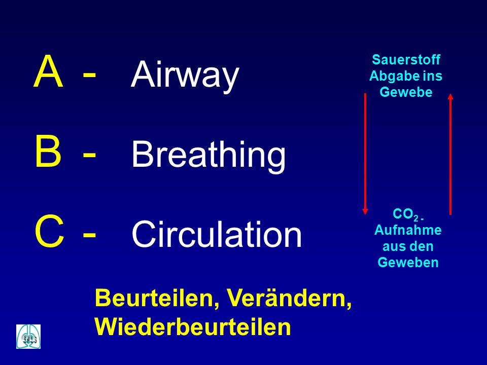 A- Airway B- Breathing C- Circulation Sauerstoff Abgabe ins Gewebe CO 2 - Aufnahme aus den Geweben Beurteilen, Verändern, Wiederbeurteilen