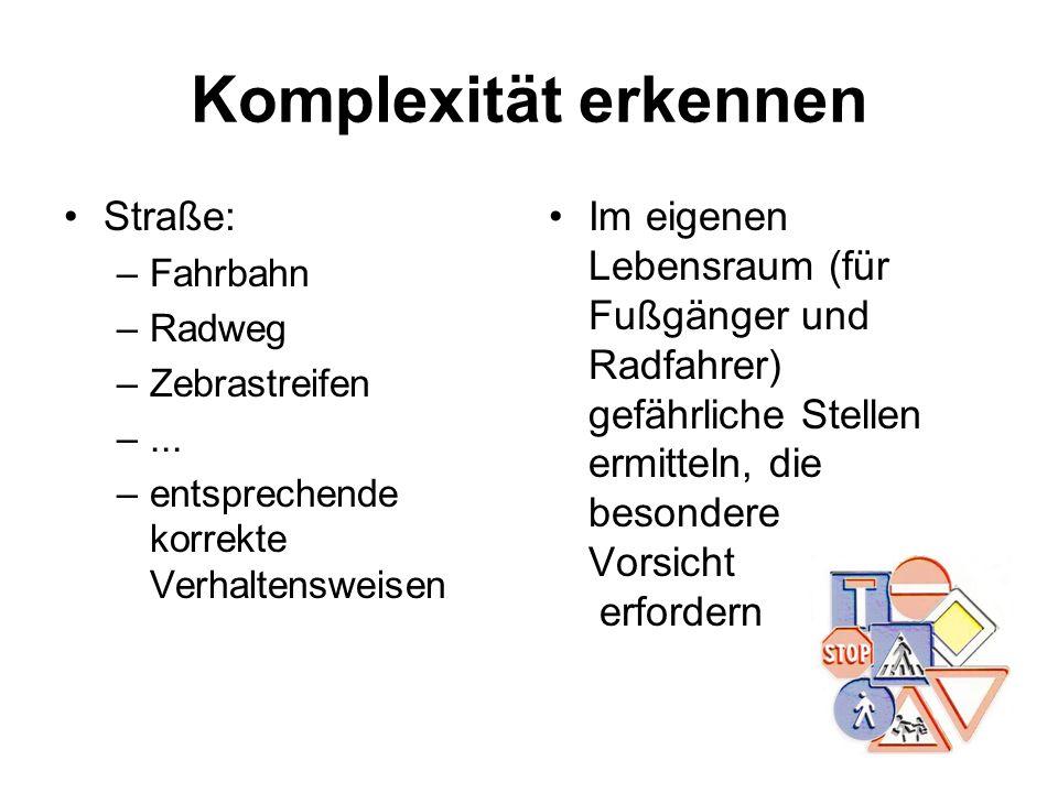 Komplexität erkennen Straße: –Fahrbahn –Radweg –Zebrastreifen –... –entsprechende korrekte Verhaltensweisen Im eigenen Lebensraum (für Fußgänger und R
