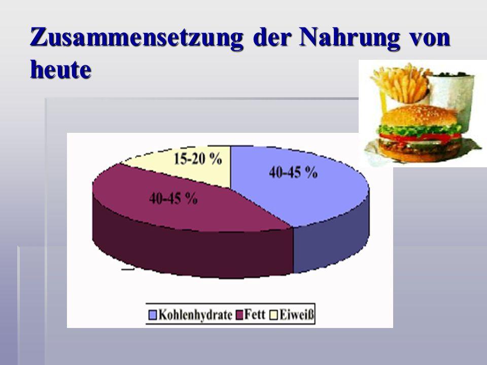 Zusammensetzung der Nahrung von heute