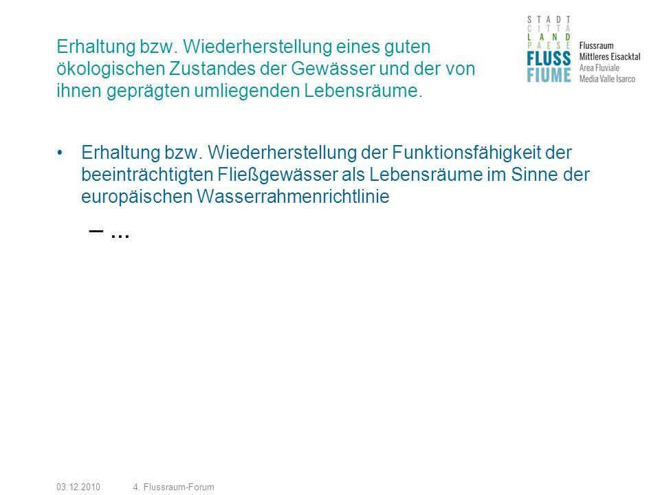 03.12.20104. Flussraum-Forum Erhaltung bzw.