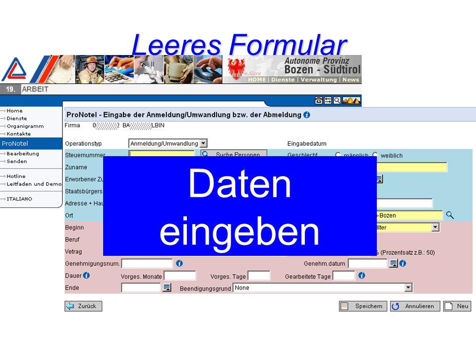 Daten eingeben Leeres Formular