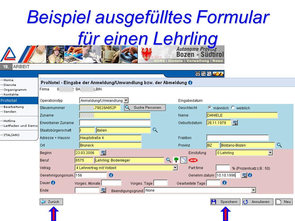 Beispiel ausgefülltes Formular für einen Lehrling