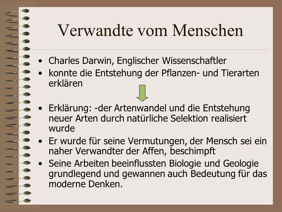 Verwandte vom Menschen Charles Darwin, Englischer Wissenschaftler konnte die Entstehung der Pflanzen- und Tierarten erklären Erklärung: -der Artenwandel und die Entstehung neuer Arten durch natürliche Selektion realisiert wurde Er wurde für seine Vermutungen, der Mensch sei ein naher Verwandter der Affen, beschimpft Seine Arbeiten beeinflussten Biologie und Geologie grundlegend und gewannen auch Bedeutung für das moderne Denken.