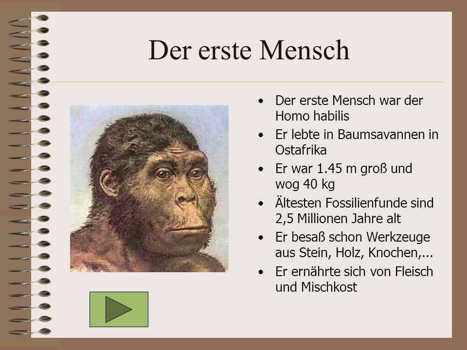 Der erste Mensch Der erste Mensch war der Homo habilis Er lebte in Baumsavannen in Ostafrika Er war 1.45 m groß und wog 40 kg Ältesten Fossilienfunde sind 2,5 Millionen Jahre alt Er besaß schon Werkzeuge aus Stein, Holz, Knochen,...
