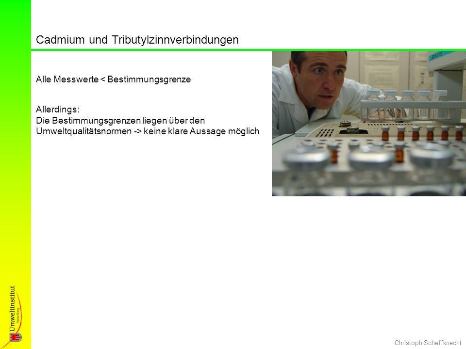 Christoph Scheffknecht Cadmium und Tributylzinnverbindungen Alle Messwerte < Bestimmungsgrenze Allerdings: Die Bestimmungsgrenzen liegen über den Umwe