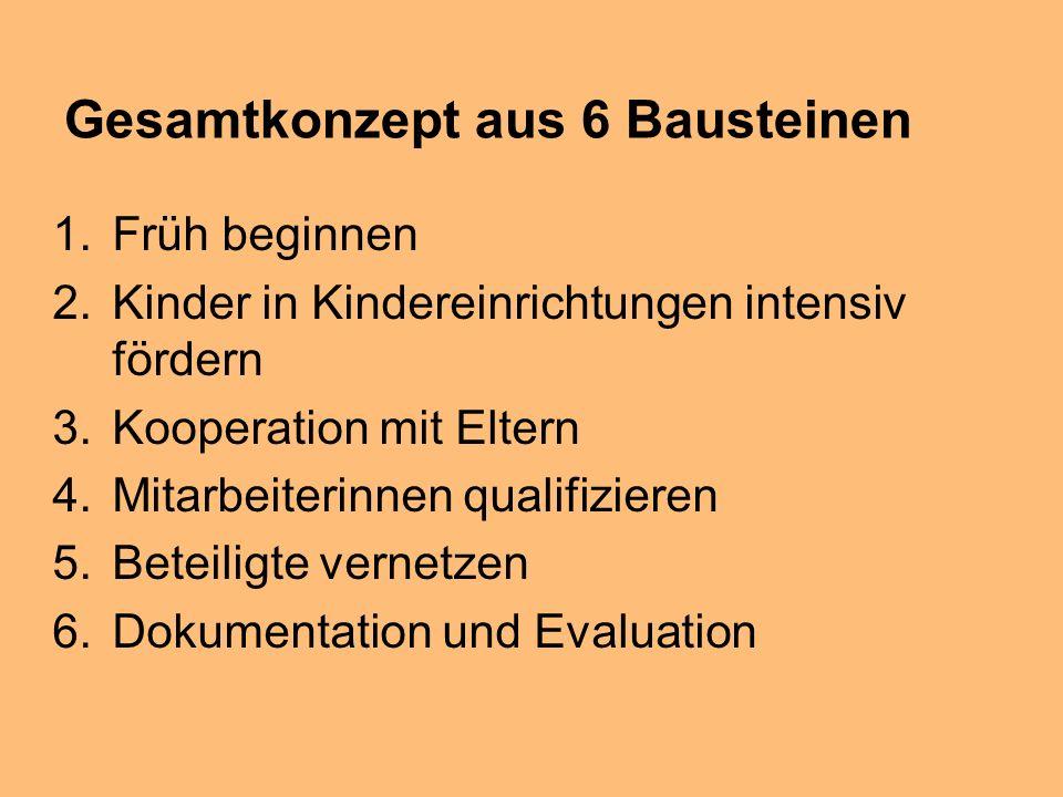 Gesamtkonzept aus 6 Bausteinen 1.Früh beginnen 2.Kinder in Kindereinrichtungen intensiv fördern 3.Kooperation mit Eltern 4.Mitarbeiterinnen qualifizieren 5.Beteiligte vernetzen 6.Dokumentation und Evaluation