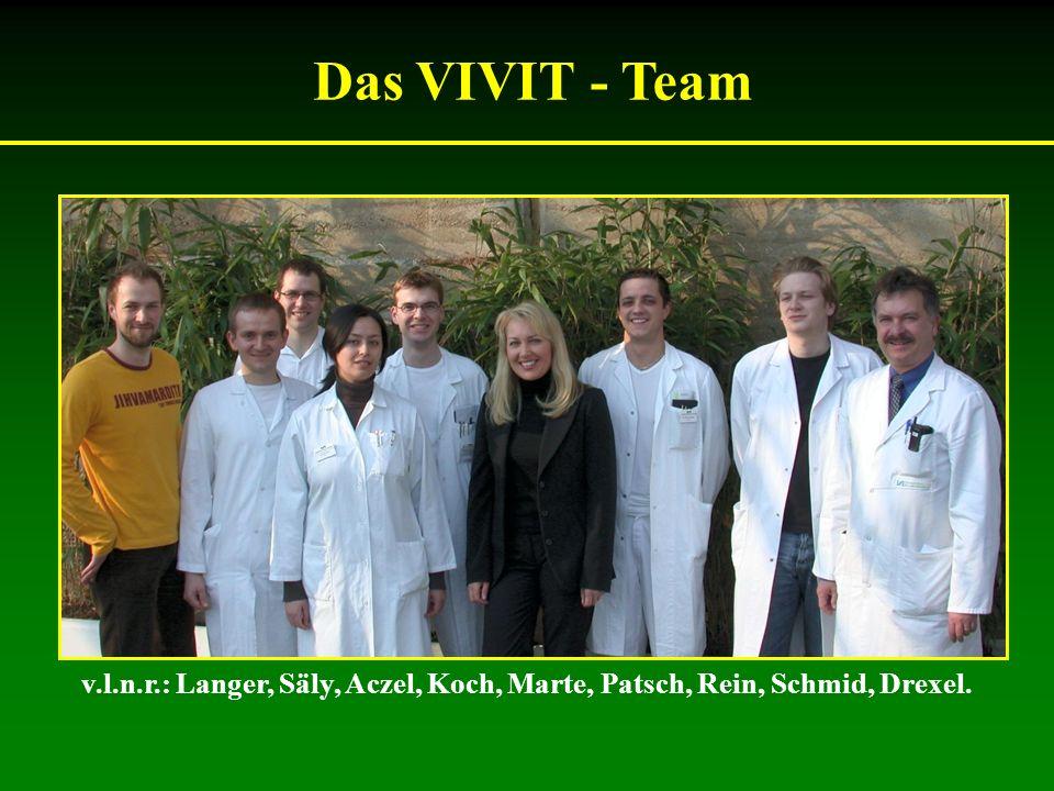 Das VIVIT - Team v.l.n.r.: Langer, Säly, Aczel, Koch, Marte, Patsch, Rein, Schmid, Drexel.