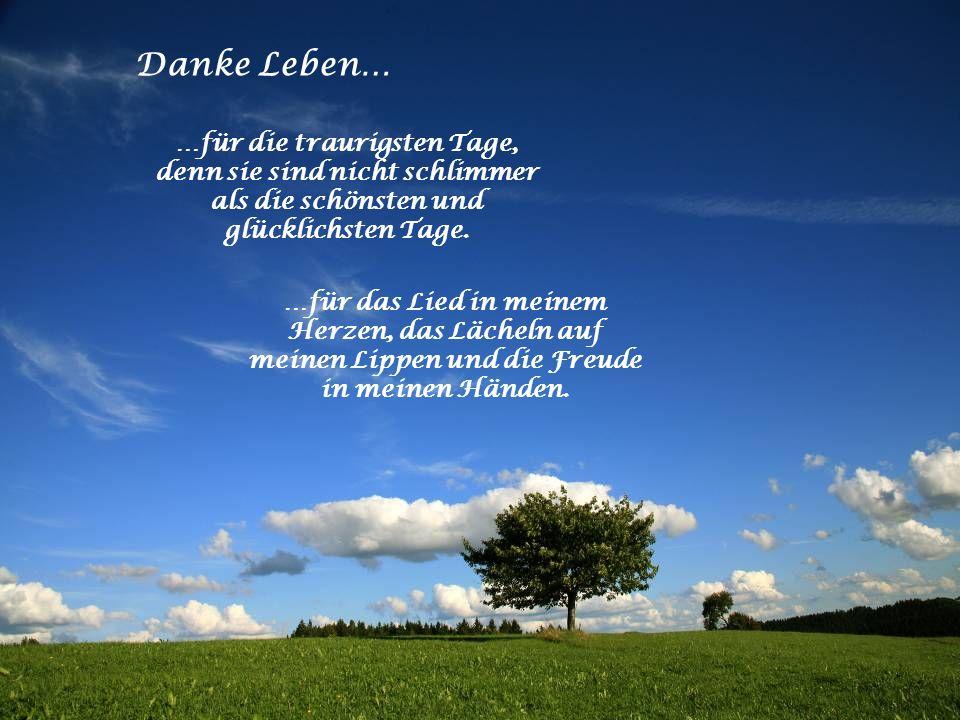 Danke Leben… …für die traurigsten Tage, denn sie sind nicht schlimmer als die schönsten und glücklichsten Tage.