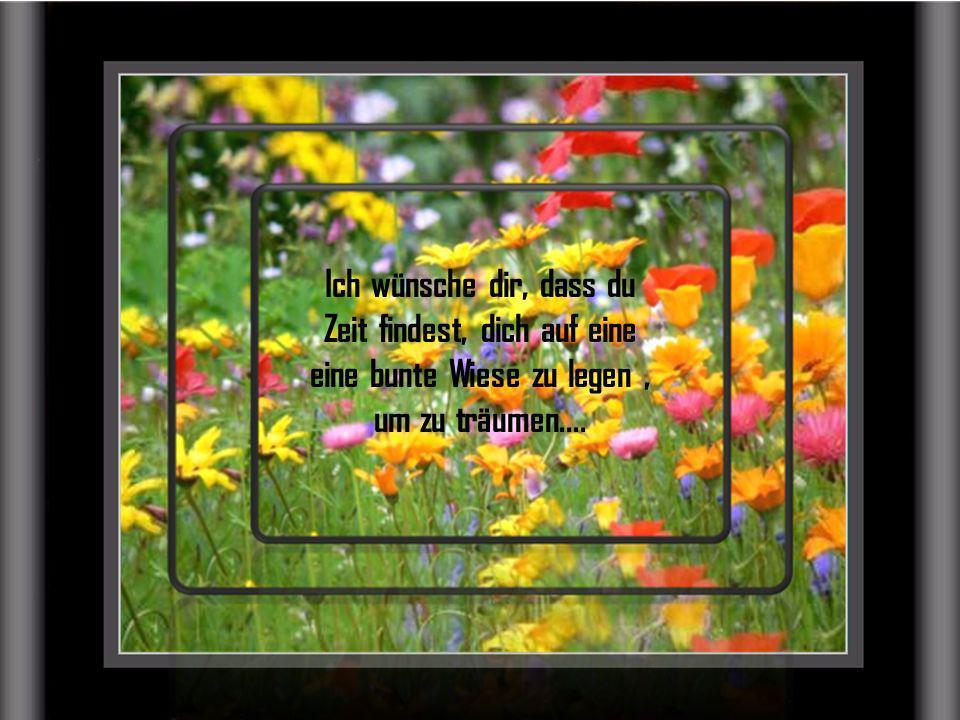 Geh die Stufen deines Lebens langsam hinauf, Schritt für Schritt, du wirst staunen, wie sich dein Blickwinkel stets verändert......