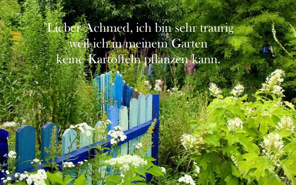 Lieber Achmed, ich bin sehr traurig weil ich in meinem Garten keine Kartoffeln pflanzen kann.