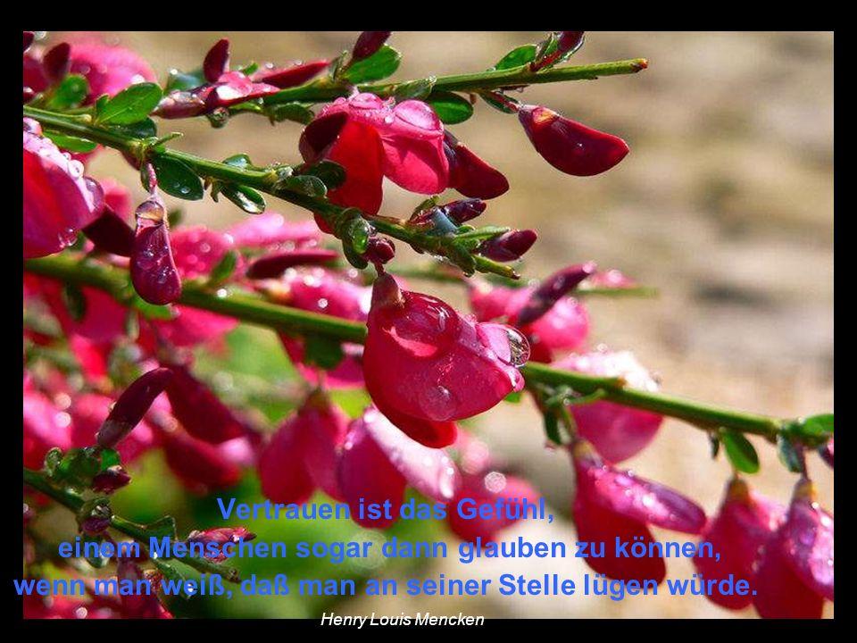 Sie können wohl alle Blumen abschneiden, aber sie können den Frühling nicht verhindern. Pablo Neruda