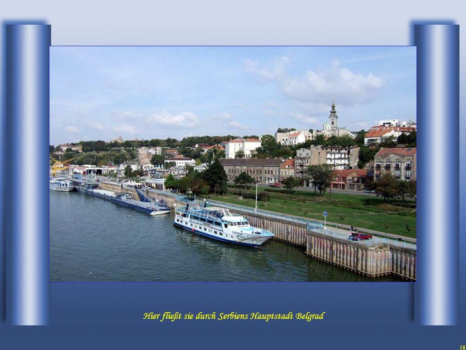 17 und kurz vor der Hauptstadt Belgrad bekommt sie Verstärkung von der Sava.