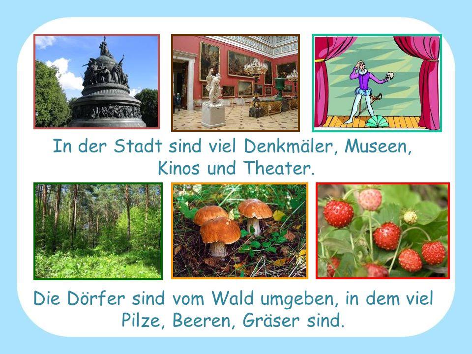 In der Stadt sind viel Denkmäler, Museen, Kinos und Theater. Die Dörfer sind vom Wald umgeben, in dem viel Pilze, Beeren, Gräser sind.