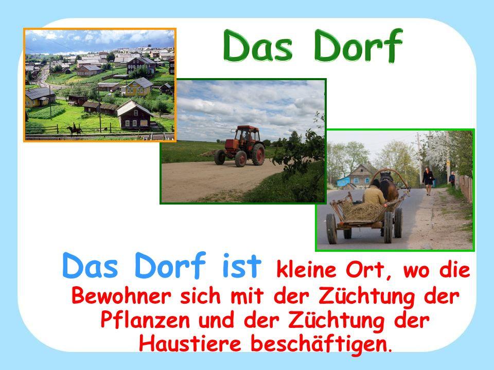 Das Dorf ist kleine Ort, wo die Bewohner sich mit der Züchtung der Pflanzen und der Züchtung der Haustiere beschäftigen.