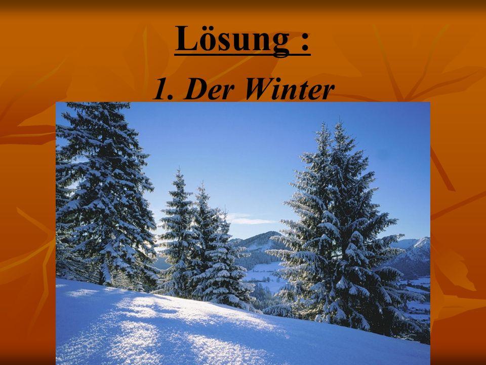 Lösung : 1.Der Winter