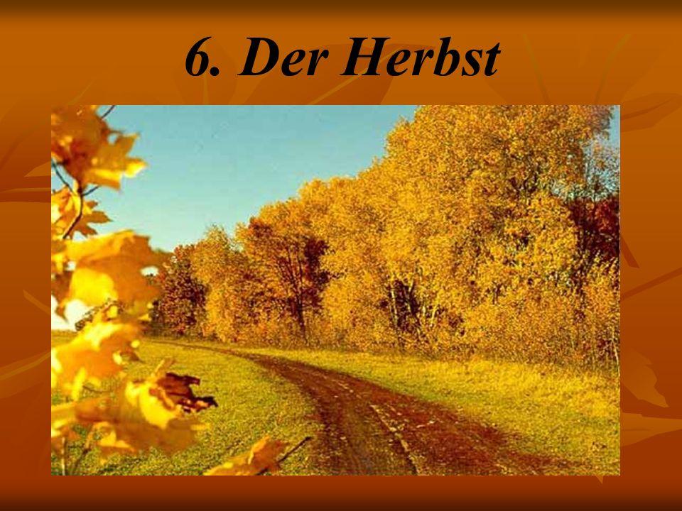 6. Der Herbst