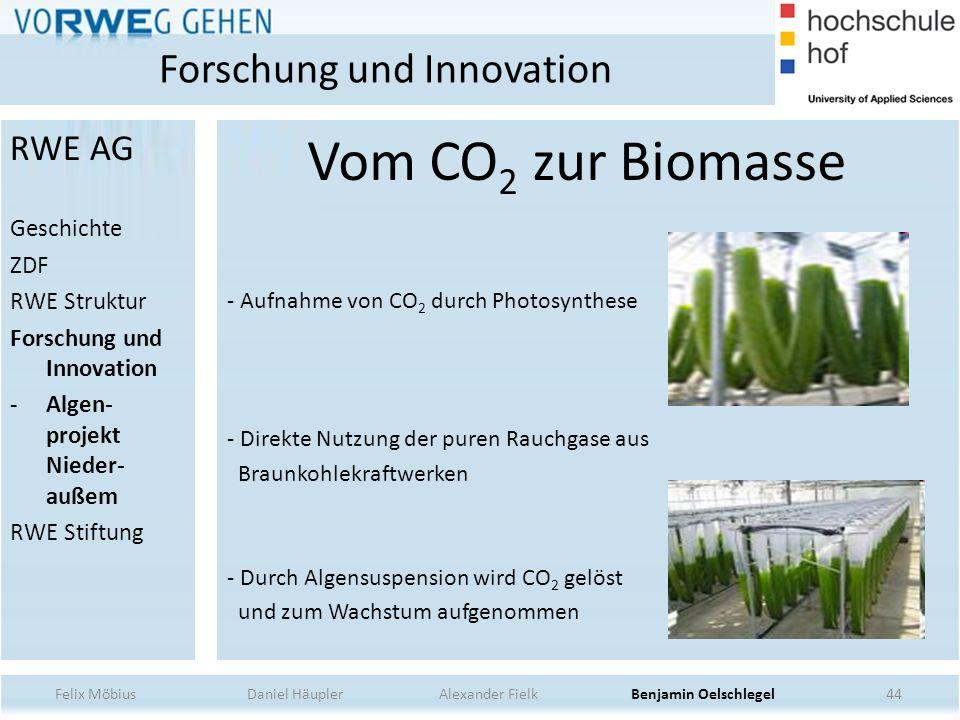 44 Vom CO 2 zur Biomasse - Aufnahme von CO 2 durch Photosynthese - Direkte Nutzung der puren Rauchgase aus Braunkohlekraftwerken - Durch Algensuspensi