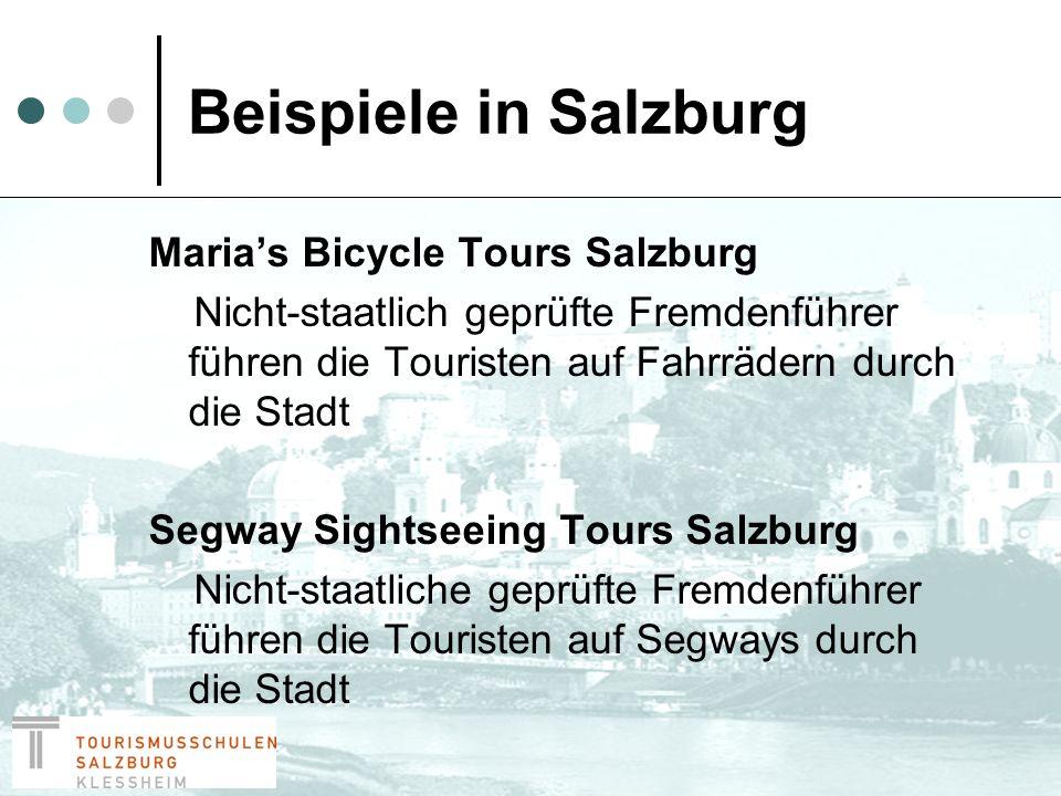 Maßnahmen Auf der SGS Homepage soll klar und deutlich angegeben werden, dass illegales Führen von Personengruppen in Salzburg streng kontrolliert wird und darüber hinaus auch geahndet wird.
