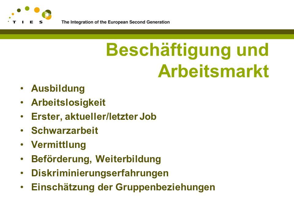 Beschäftigung und Arbeitsmarkt Ausbildung Arbeitslosigkeit Erster, aktueller/letzter Job Schwarzarbeit Vermittlung Beförderung, Weiterbildung Diskriminierungserfahrungen Einschätzung der Gruppenbeziehungen