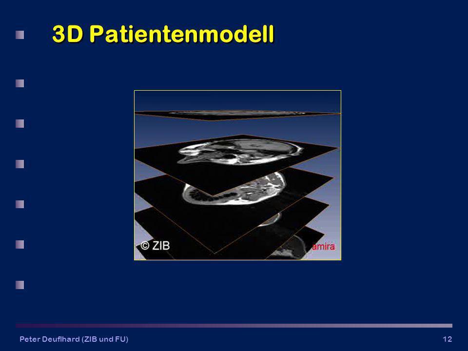 Peter Deuflhard (ZIB und FU)12 3D Patientenmodell