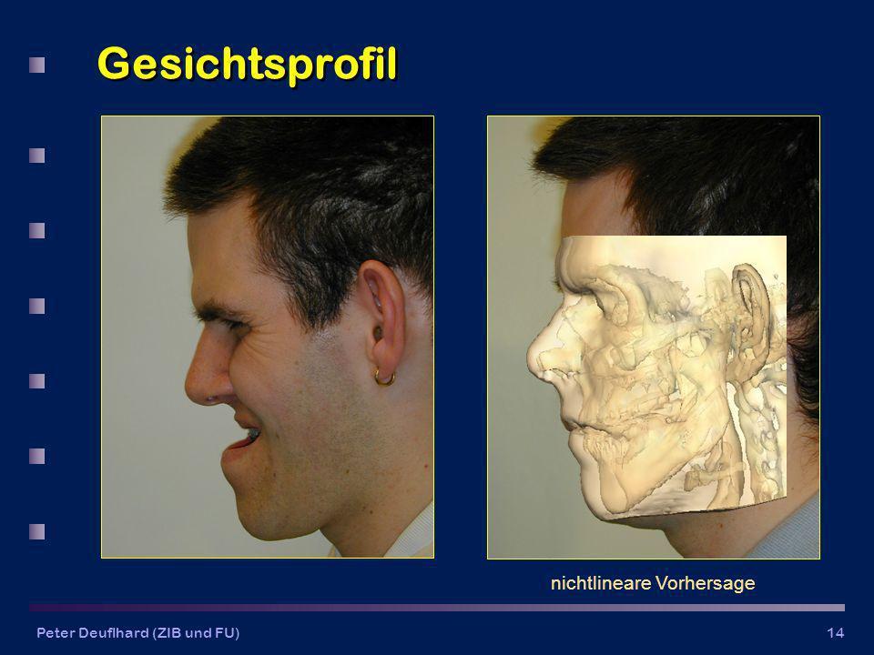 Peter Deuflhard (ZIB und FU)14 Gesichtsprofil nichtlineare Vorhersage