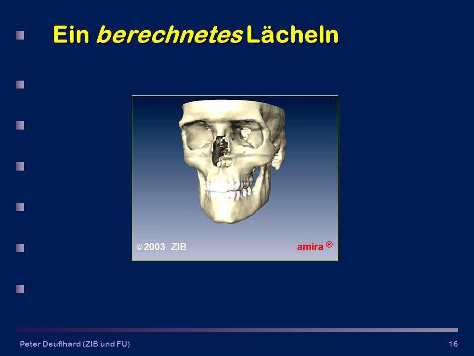 Peter Deuflhard (ZIB und FU)16 Ein berechnetes Lächeln