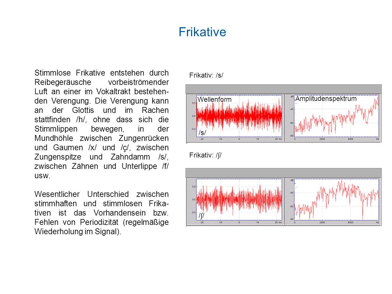 Stimmlose Frikative entstehen durch Reibegeräusche vorbeiströmender Luft an einer im Vokaltrakt bestehen- den Verengung. Die Verengung kann an der Glo