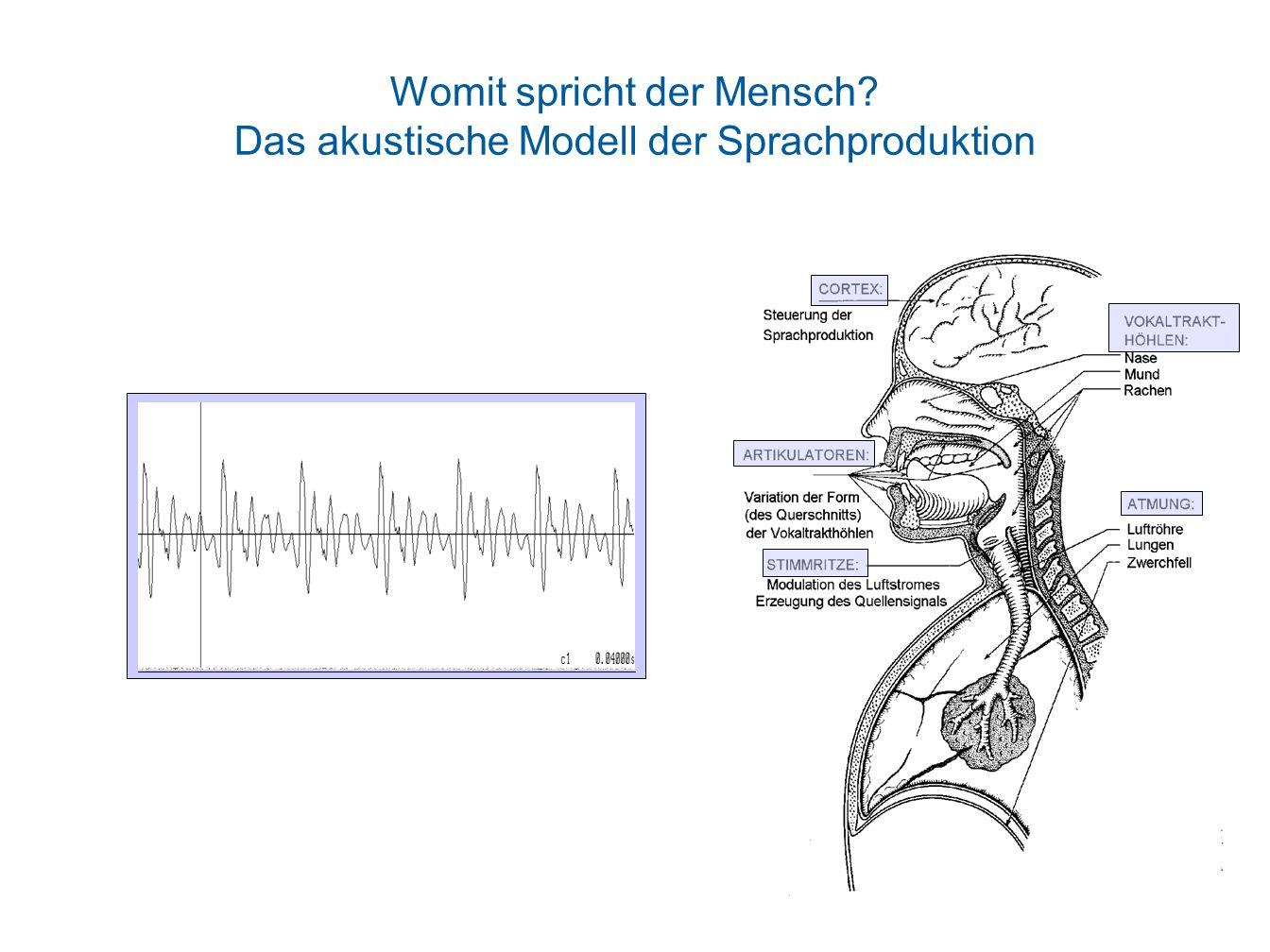 Womit spricht der Mensch? Das akustische Modell der Sprachproduktion