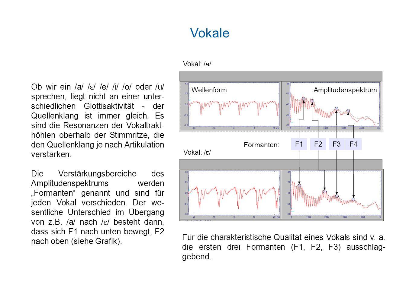 Ein Laut, der der vierfachen Wellenlänge λ der Röhrenlänge L (λ=4*L) entspricht, wird mit maximaler Amplitude verstärkt: Für einen Vokaltrakt mit einer durchschnittlichen Länge von 17 cm und einer Schallgeschwindigkeit c von 340 m/s ergibt sich ein erster Formant von 500 Hz (F1=c/4L) und die weiteren natürlichen Resonanzfrequenzen als ungerade Vielfache von F1 (F2=1500 Hz, F3=2500 Hz, etc.).