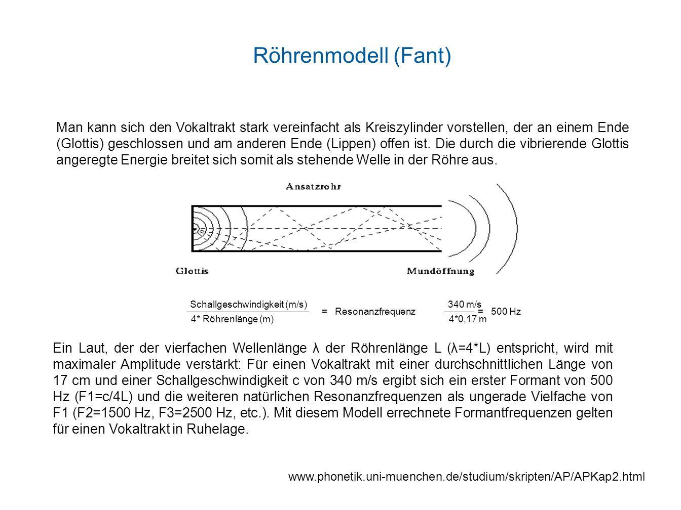 Ein Laut, der der vierfachen Wellenlänge λ der Röhrenlänge L (λ=4*L) entspricht, wird mit maximaler Amplitude verstärkt: Für einen Vokaltrakt mit eine