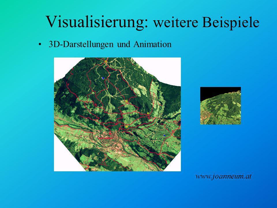 Visualisierung: weitere Beispiele Wegangaben Verkehrskarten Services www.webraska.com