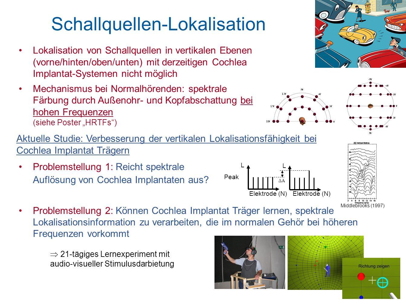 Problemstellung 1: Reicht spektrale Auflösung von Cochlea Implantaten aus? Problemstellung 2: Können Cochlea Implantat Träger lernen, spektrale Lokali