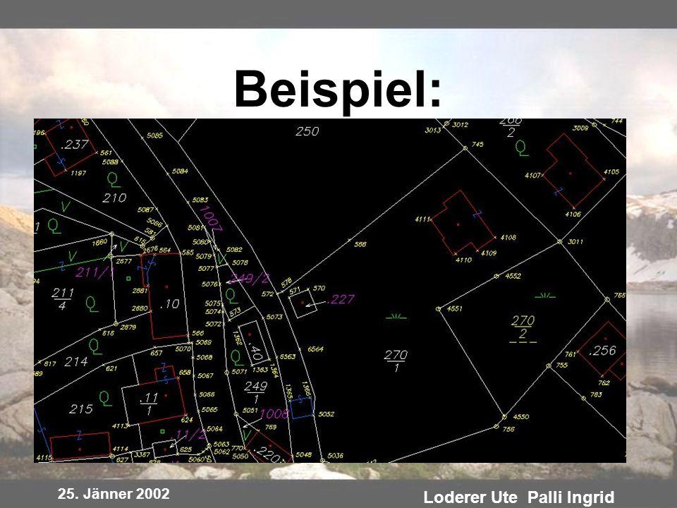 25. Jänner 2002 Loderer Ute Palli Ingrid Beispiel: