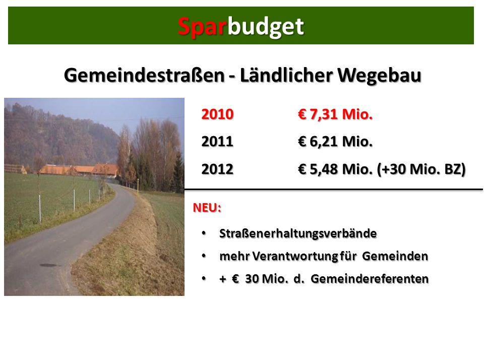 Gemeindestraßen - Ländlicher Wegebau 2010 7,31 Mio.