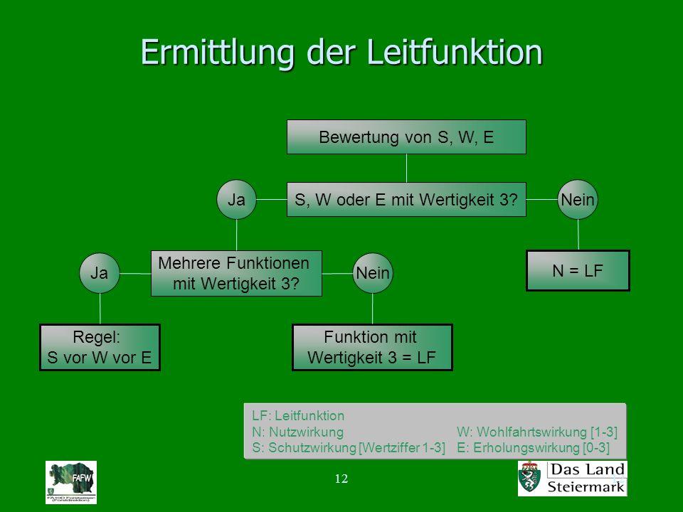 12 Ermittlung der Leitfunktion Bewertung von S, W, E Ja N = LF S, W oder E mit Wertigkeit 3? JaNein Mehrere Funktionen mit Wertigkeit 3? Funktion mit