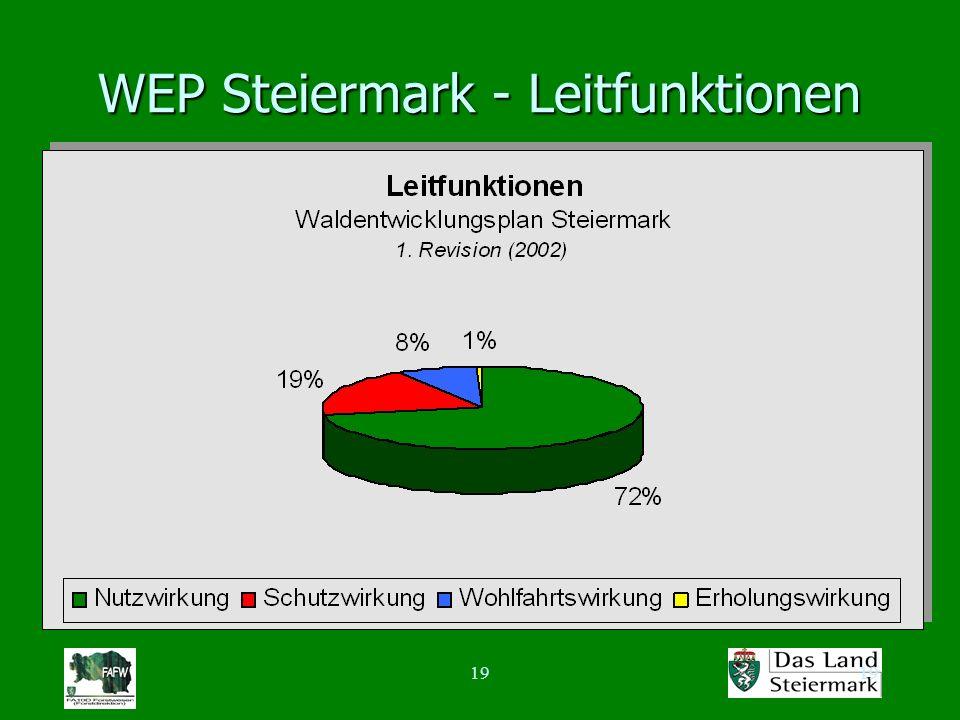 19 WEP Steiermark - Leitfunktionen