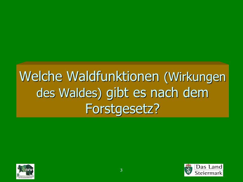 33 Welche Waldfunktionen (Wirkungen des Waldes) gibt es nach dem Forstgesetz?