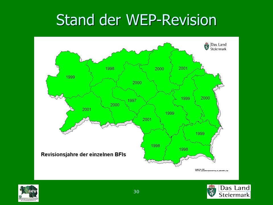 30 Stand der WEP-Revision