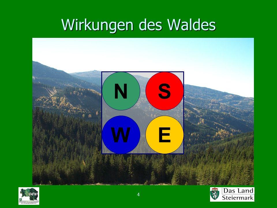 44 Wirkungen des Waldes N WE S