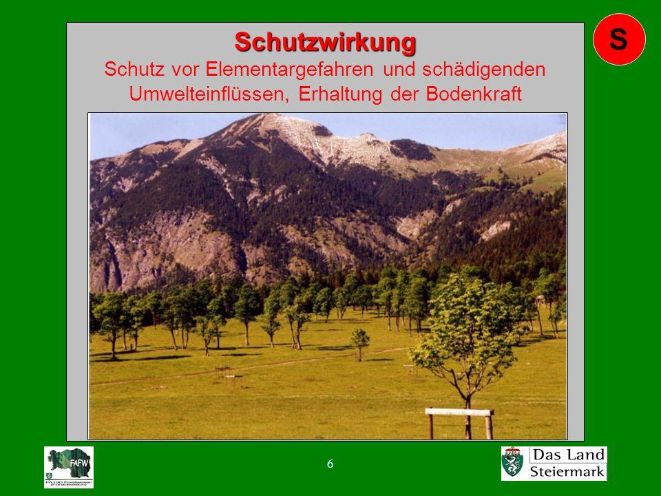 77 W Wohlfahrts- wirkung Wohlfahrts- wirkung Einfluss des Waldes auf den Ausgleich von Klima und Wasserhaushalt, Reinigung und Erneuerung von Luft