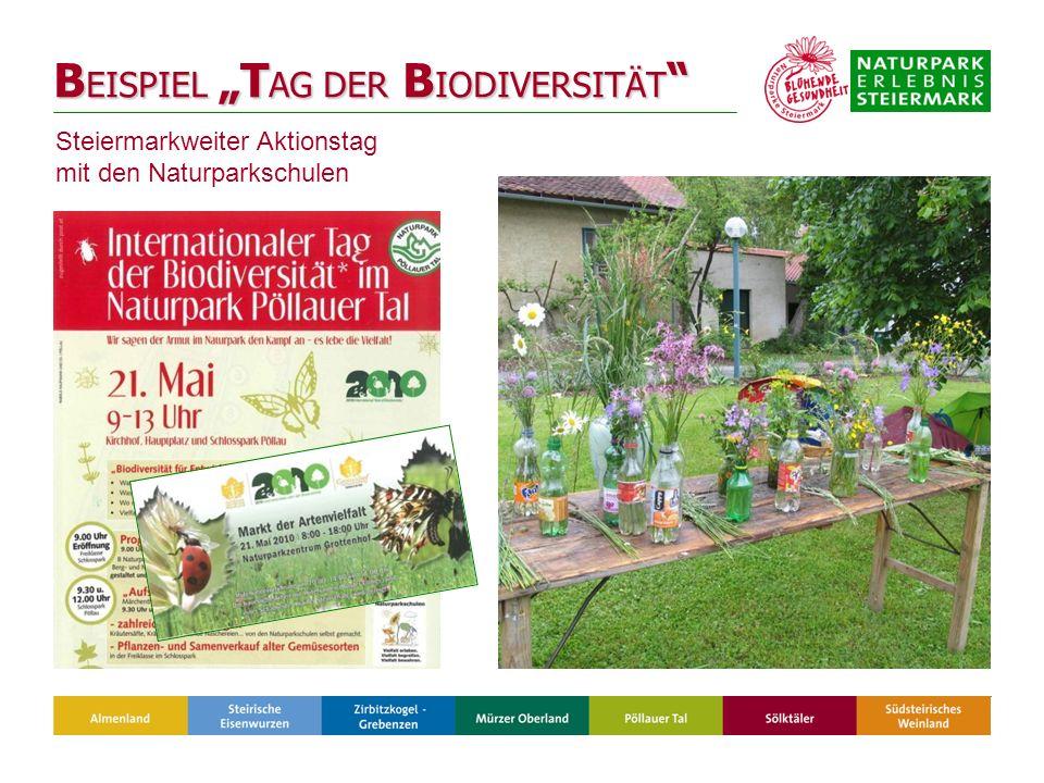 B EISPIEL T AG DER B IODIVERSITÄT B EISPIEL T AG DER B IODIVERSITÄT Steiermarkweiter Aktionstag mit den Naturparkschulen